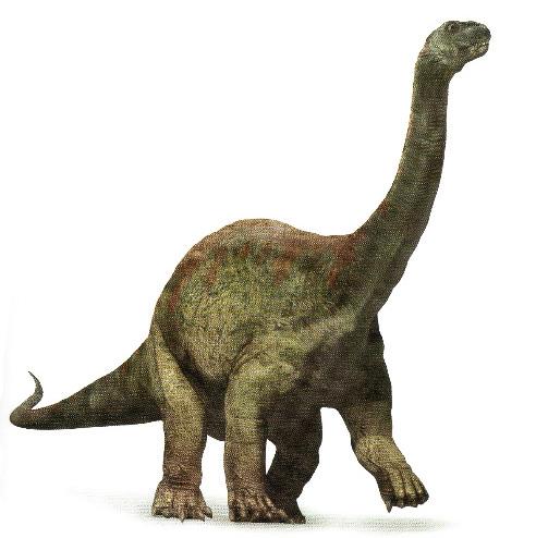 ArgentinosaurusPicture.jpg