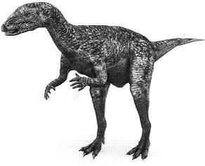 DryosaurusP.JPG