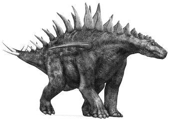 HuayangosaurusP.JPG