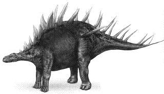 KentrosaurusP.jpg