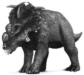 PachyrhinosaurusP.JPG