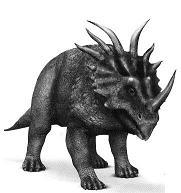 StyracosaurusP.JPG